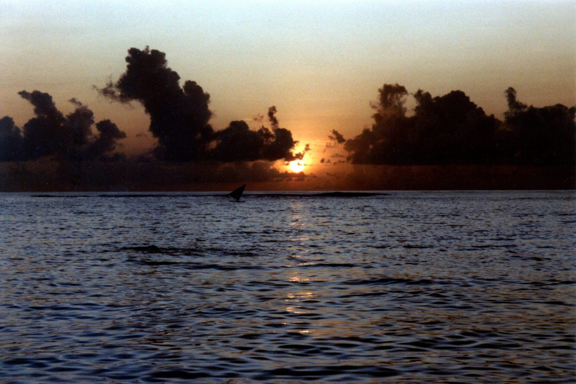 Weiteres Foto eines Sonnenuntergang auf dem offenen Meer von St. Lucia